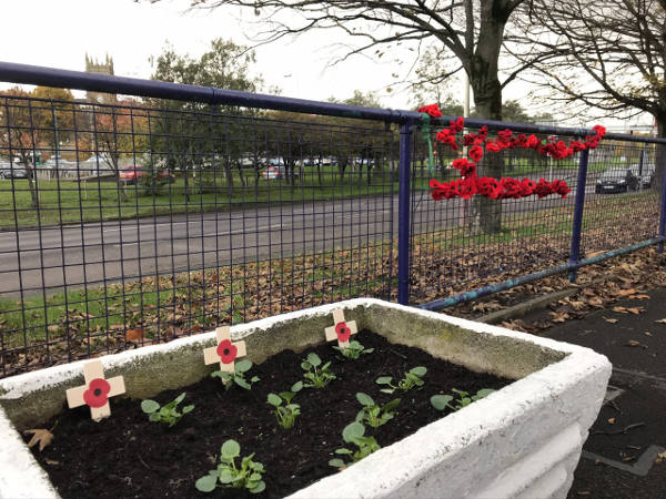 Poppies at Blaydon Station
